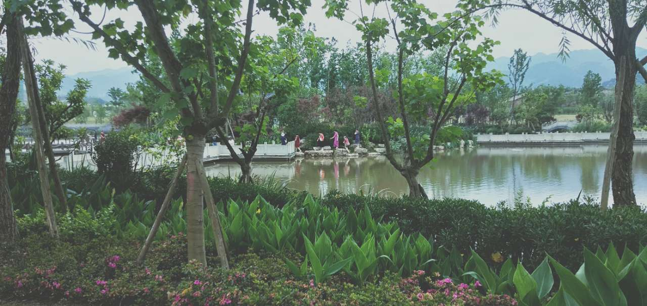 双桂湖好多拍抖音的,有些动作看着好危险哟……